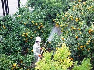 農薬の散布方法