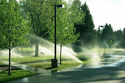 water8 (4).jpg
